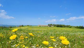 Curso Gratuito  Monitor de Turismo Activo + Monitor de Medio Ambiente y Gestión Ambiental (Doble titulación + 4 Créditos ECTS)