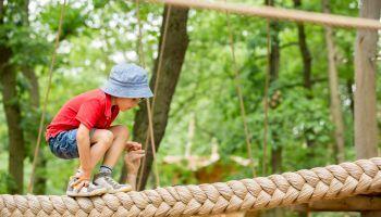 Curso Gratuito Monitor de Actividades Deportivas para Personas con Discapacidad Física + Titulación Universitaria en Primeros Auxilios